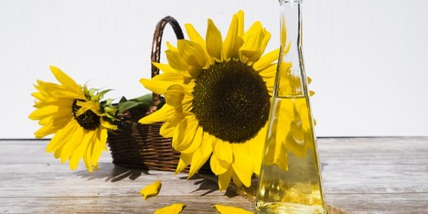 buy sunflower oil online