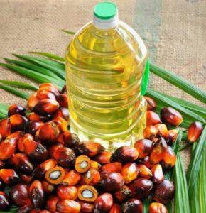 buy palm oil online