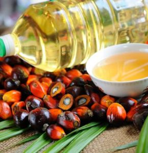 exporter and supplier of Palm Oil